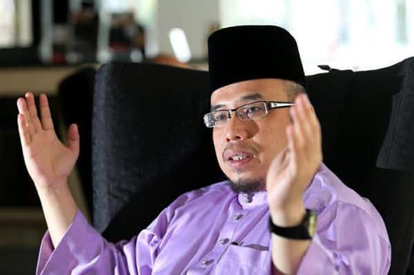 Himpunan 8 Disember harus rentas parti, kata Mufti Perlis
