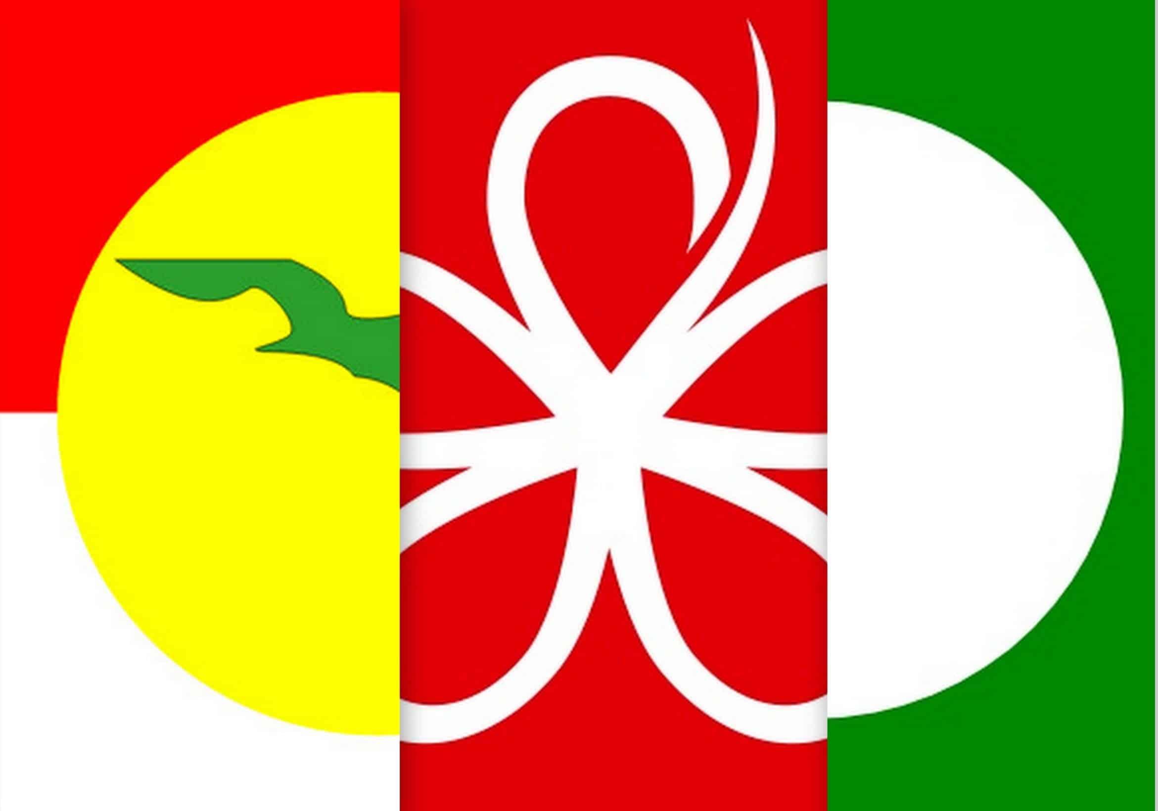 Pas yakin kerjasama politik dengan BN, Bersatu sedia hadapi PRU-15